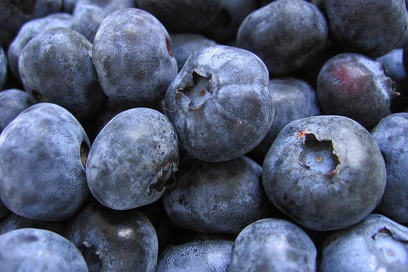 fat burning foods blueberries