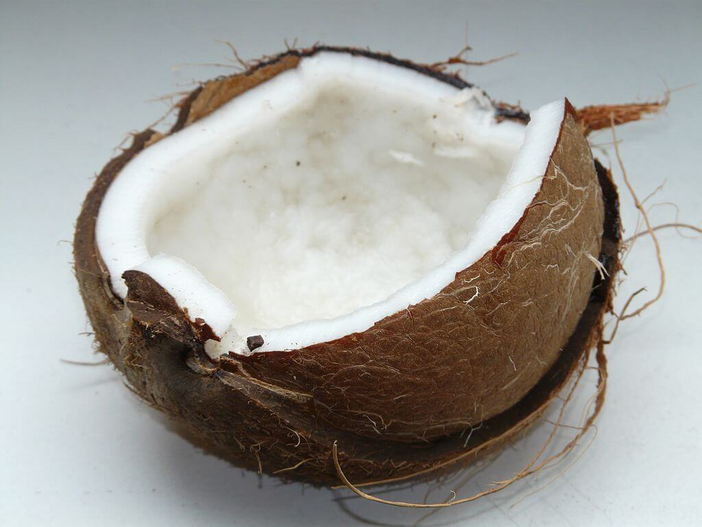 fat burning foods coconut