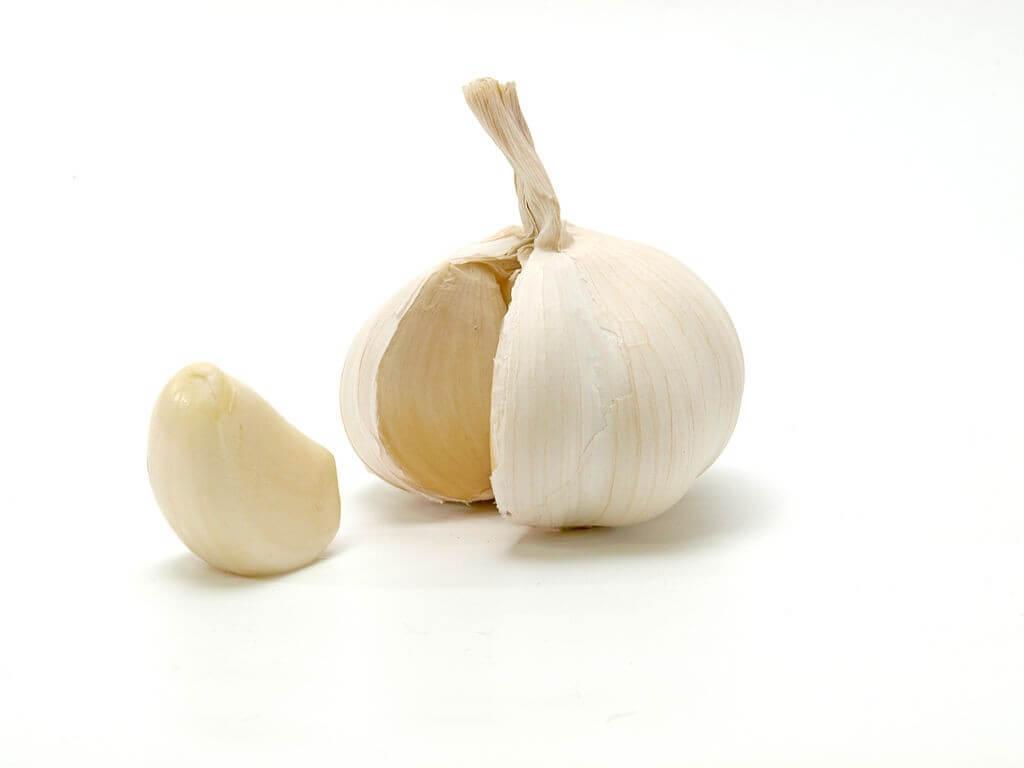 fat burning foods garlic