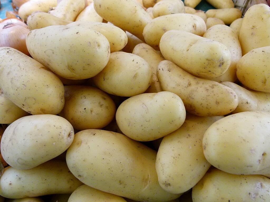fat burning foods potatoes
